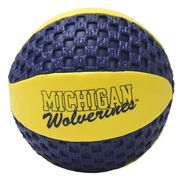 Michigan Gripper Basketball