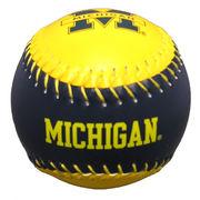University of Michigan Softball