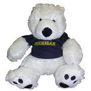 Chelsea Teddy Bear Co. University of