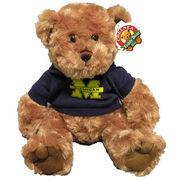 Michigan Bear with Hood