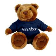 Plush Ann Arbor Michigan Bear
