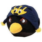 Simonsez University of Michigan Angry