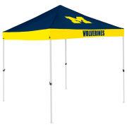 Logo University of Michigan 9x9 Canopy