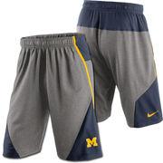 Nike University of Michigan Fly XL 4.0