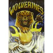 University of Michigan Wolverines 24x36