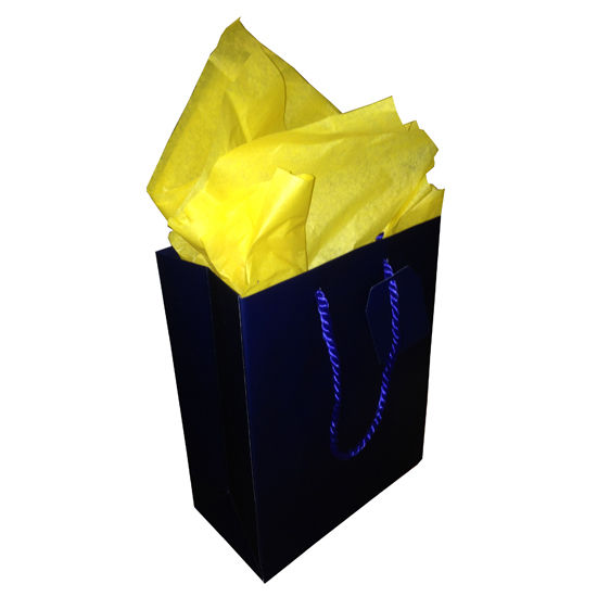Jillson Roberts University of Michigan Medium Navy Tote Gift Bag