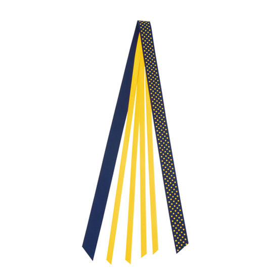 Carolina University of Michigan Spirit Hair Ribbon