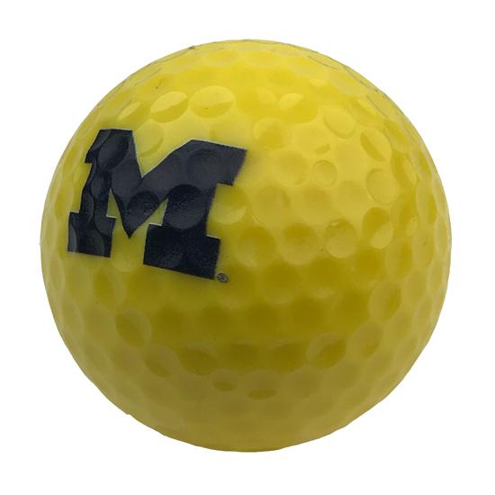 Enjoy Life University of Michigan Yellow Golf Ball