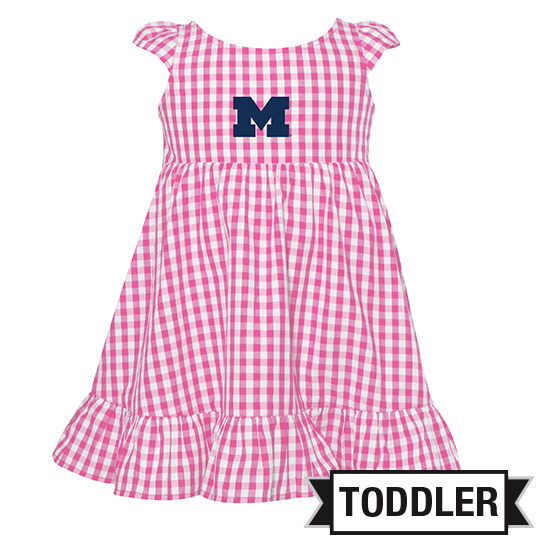 Garb University of Michigan Toddler Girls Pink Gingham Dress