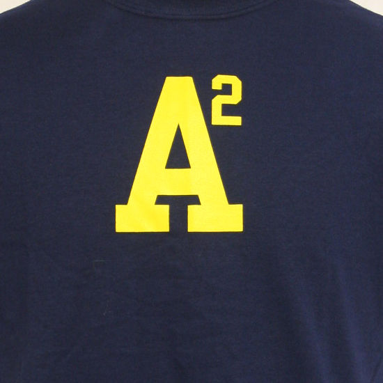 university of michigan navy a2 ann arbor tee