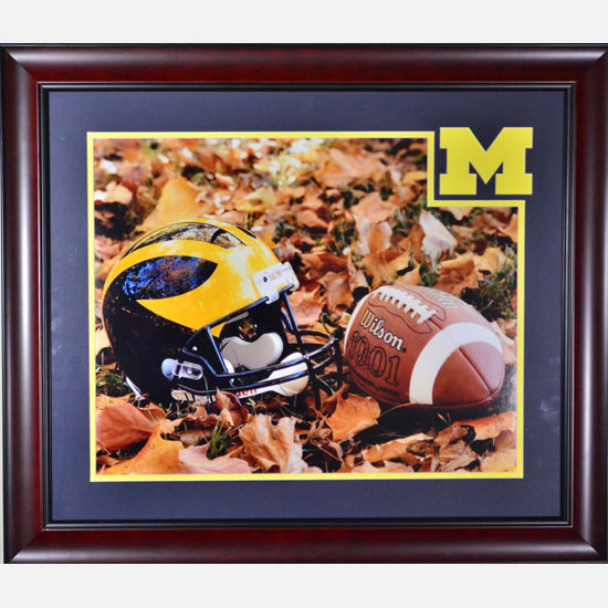 sale retailer af4f9 c35e1 University of Michigan Framed Picture: Authentic Ball/Helmet ...