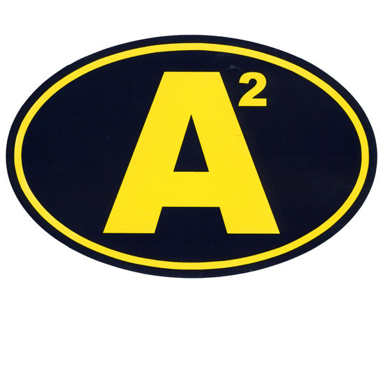 Pine University of Michigan A2 (Ann Arbor) Euro Decal