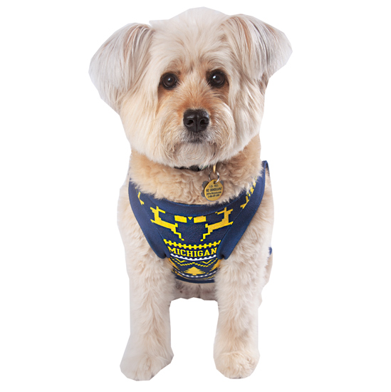 Valiant University of Michigan Holiday Pet Tee