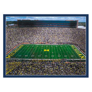 Boxercraft University of Michigan Football Stadium Scenes Throw Blanket