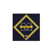 Hi-Look University of Michigan Eyeglass Cleaning Cloth