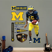 Fathead University of Michigan Football Denard Robinson Wall Graphic