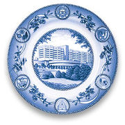 Classic Collegiate China University of Michigan Hospital Plate