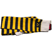FBF University of Michigan Rugby Striped Socks