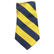 Jardine University of Michigan Thick Striped Tie