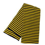 Michigan Striped Scarf