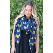 Alma-Mater Collection Maize and Blue State of Michigan Scarf