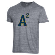 Champion University of Michigan Dark Heather Gray A2 Triblend Tee