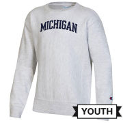 Champion University of Michigan Youth Silver Gray Reverse Weave Crewneck Sweatshirt