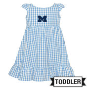 Garb University of Michigan Toddler Girls Blue Gingham Dress