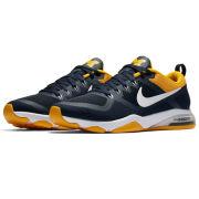 Nike University of Michigan Women's Zoom Fitness Week Zero Shoe