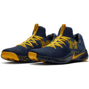 Nike University of Michigan Free TR V8 Shoes