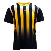 Jordan University of Michigan Navy/Yellow Vertical Stripe Dri-FIT Legend Tee