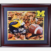 University of Michigan Framed Picture: Authentic Ball/Helmet in Leaves