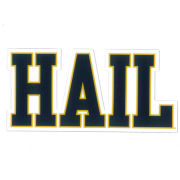 SDS University of Michigan 3'' HAIL Ultra Durable Dizzlers Decal