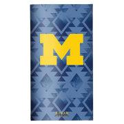 TF Publishing University of Michigan 2 Year Pocket Calendar